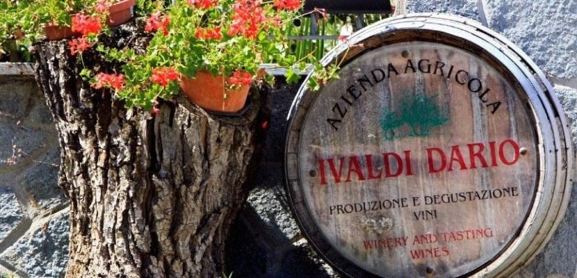 AZIENDA-AGRICOLA-IVALDI-DARIO-NIZZA-MONFERRATO